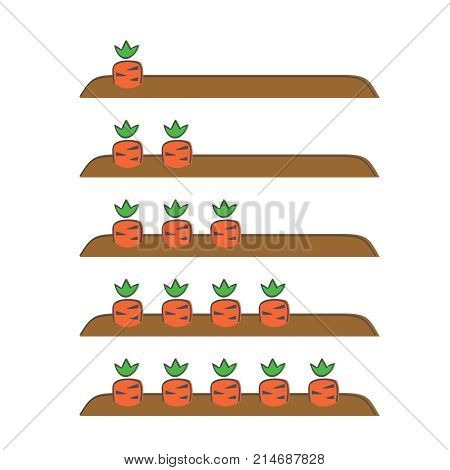 Garden bed with carrots vector illustration doodle style. We count carrots one two three four five. We count carrots