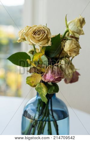 Bouquet of withered roses in glass vase yellow and pink