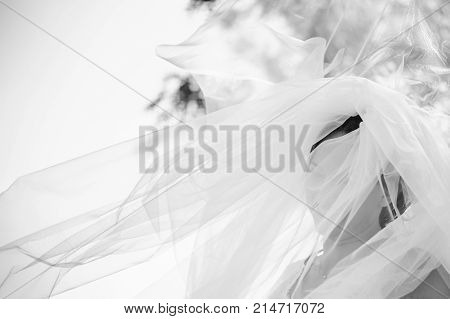 Tender Happy Bride In Veil, Happy Woman In Wedding Dress With Bouquet In Hands, White Veil Covers Fa