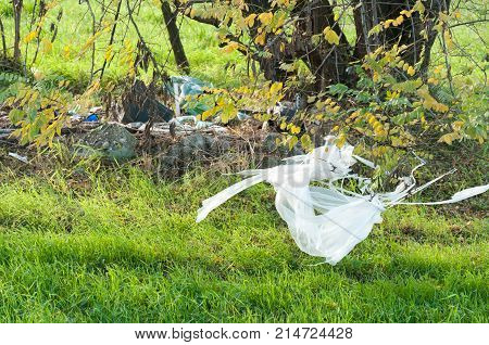 Garbage dump on the grass near the forest ecological disaster concept polluting nature and city park with litter while plastic bag stuck on the branch
