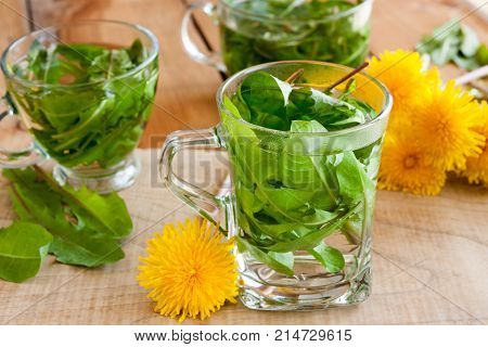 Dandelion Tea - Hot Water Poured Over Fresh Dandelion Leaves In A Tea Cup