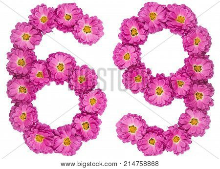 Arabic Numeral 69, Sixty Nine, From Flowers Of Chrysanthemum, Isolated On White Background