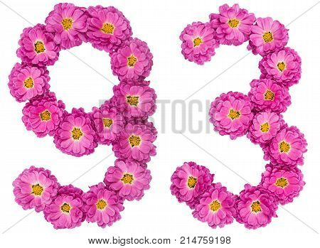 Arabic Numeral 93, Ninety Three, From Flowers Of Chrysanthemum, Isolated On White Background