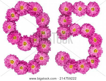 Arabic Numeral 95, Ninety Five, From Flowers Of Chrysanthemum, Isolated On White Background