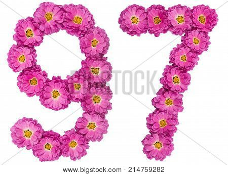 Arabic Numeral 97, Ninety Seven, From Flowers Of Chrysanthemum, Isolated On White Background