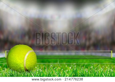 Tennis Ball On Grass Court With Copy Space