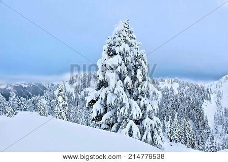 Mount Hood ski resort after snowfall. Portland. Oregon. United States.