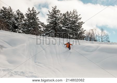 Snowboard rider descending down the snow on the background of trees and cloudy sky