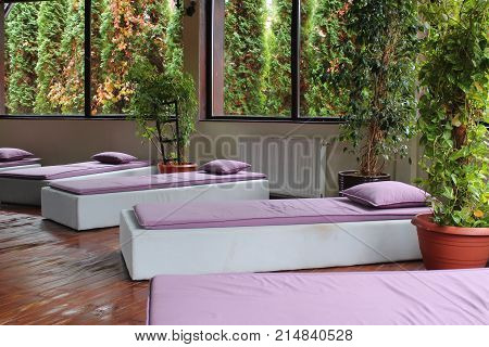 Pink loungers in the Spa. chaise loungers indoor. Relax time. Healthy lifestyle. SPA zone. indoor plants and big windows.