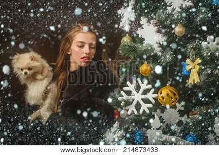 Santa Claus Girl With Pet At Tree.