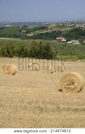 Rural landscape along the road from Sant'Egidio alla Vibrata to Civitella del Tronto (Abruzzi Italy) at summer