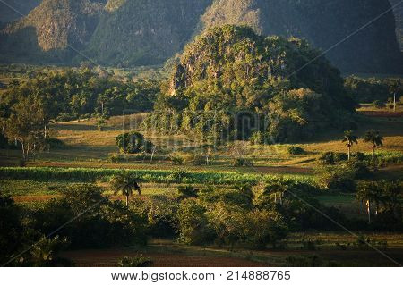 Vinales landscape in Cuba : mogotes and tobacco fields
