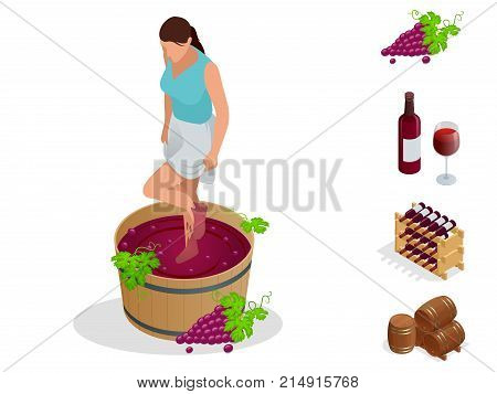 Isometric wine production icons collection. Girl crushes grapes for making wine. Wine festival. Vector illustration isolated on white background.