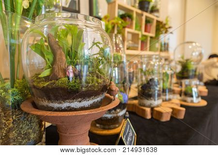 A terrarium with pink girl dolls on a black velvet table and The shelves with a terrarium are the background.