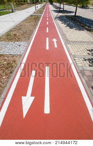 Bike Lane With Arrow Signs In Sidewalk Of Street