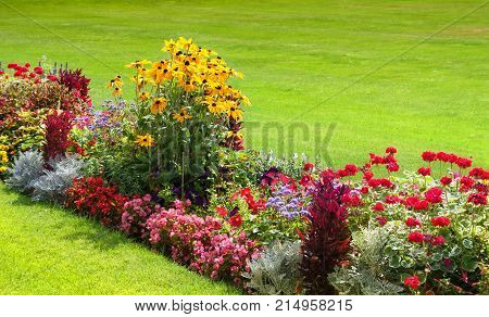 Beautiful garden with multicolored flowerbed on a lawn