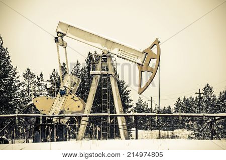 Pump Jack Situated In Forest.