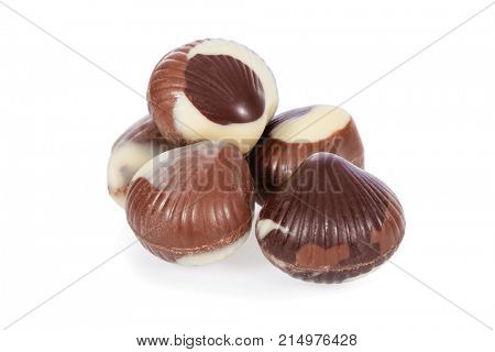 Belgian milk chocolate bonbons shaped as seashells or clams isolated on white background, cut out or cutout