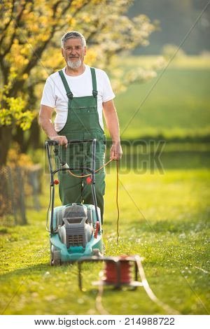 Portrait of senior man gardening, taking care of his lovely orchard, ejoying actively his retirement