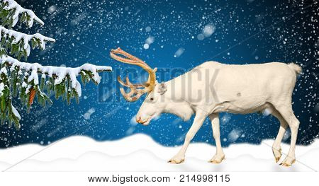 Winter holidays banner horizontal concept deer behind a snowy landscape, change of year, new year 2018, christmas
