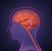 Biofield and human brain. 3d image on dark blue background poster