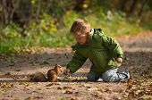 Little boy and squirrel at warm sunny fall day poster