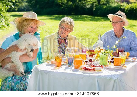 Elderly People Sitting With Pet At Picnic Table, White Dog Is Trying To Steal The Food From Them.