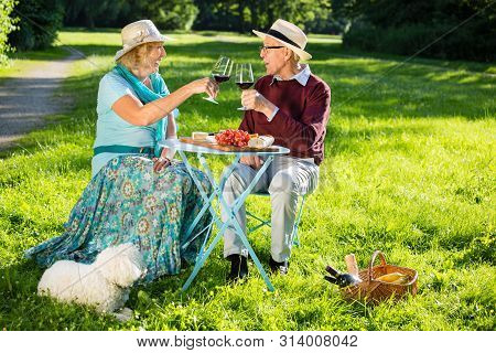 Happy Senior Couple Picnicking In The Park.