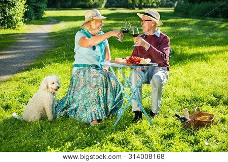 Elderly Couple Sitting In Park And Toasting With Red Wine.