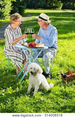 Happy Senior Couple Having A Picnic In The Park.