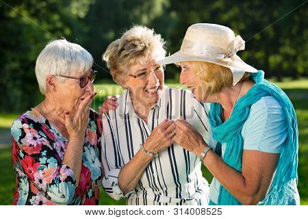 Family Members Gossiping And Laughing.