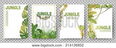 Green Tropical Frames Template. Jungle Plants Vector Cards. Jungle Background Frame, Green Tropical