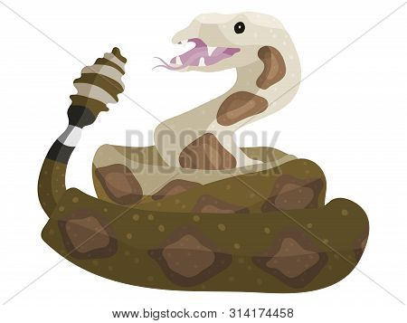 Rattlesnake Animal Cartoon Drawing For The Holiday Of Halloween And The Zoo