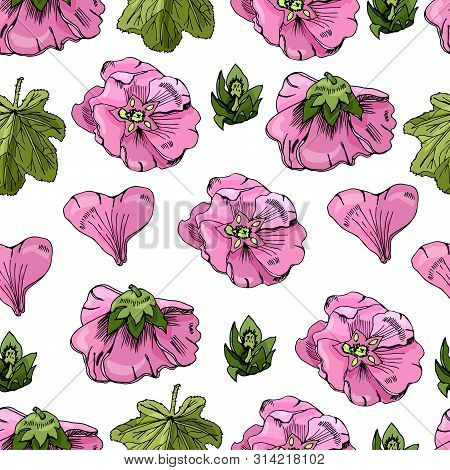 Seamless Pattern With Single Flowers Of Pink Mallow And Green Leaves. Hand Drawn Ink And Colored Ske