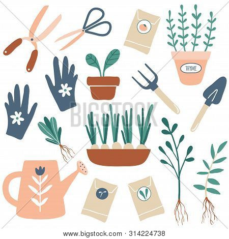 Vector Hand Drawn Illustrations Of Gardening. Cute Garden Work Hand Drawn Elements. Garden Tools: Pl
