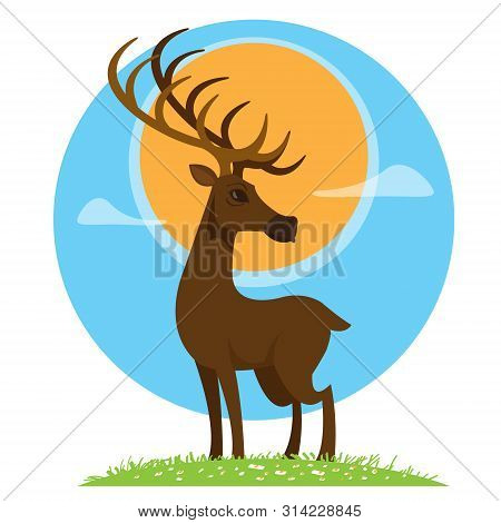 Deer. Artiodactyla Mammals. Illustrations For Gaming Applications Design For Teaching Aids.