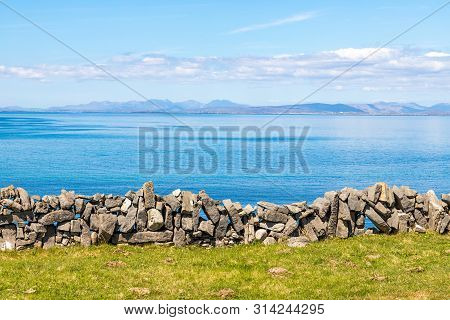 Flowered Farm Field With Rock Walls And Galway Bay In Background In Inishmore