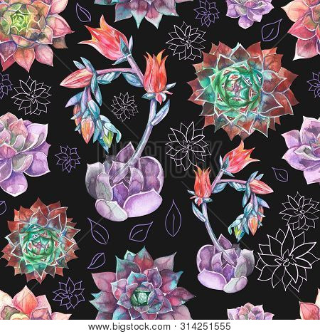 Colorful Seamless Pattern With Succulents Plants.perfect For Your Project, Wedding, Greeting Card, P