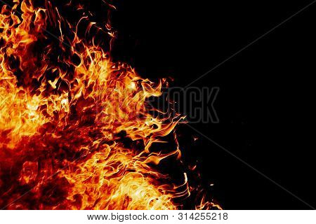 Fire On A Dark Background. Background From Fire. Fire Close Up. Background For Designers.wood Fire O