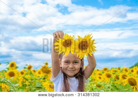Adorable Little Girl Holding Sunflowers In The Garden. Closeup Kid Portrait, Baby With Two Sunflower