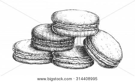 Macaroon Biscuit Sweet Dessert Vintage Vector. French Bakery Confectionery Delicious Cookie Macaroon