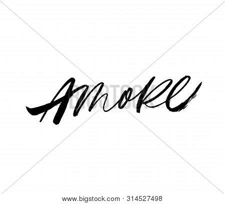 Amore Handwritten Ink Brush Vector Lettering. Love, Italian Word Handwriting. Valentine Day Greeting
