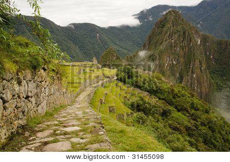 Inca Trail At Machu Picchu