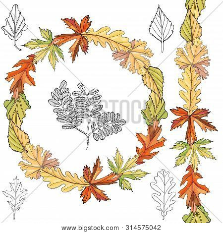 Set With Monochrome   Leaves Of Different  Trees And Autumn Color Endless Brush And Wreath Isolated