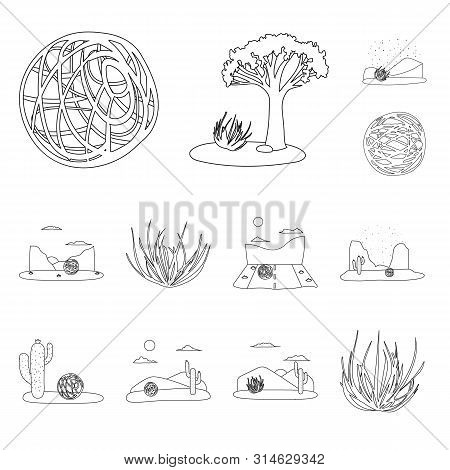 Isolated Object Of Wilderness And Texas Icon. Set Of Wilderness And Pasture Stock Symbol For Web.