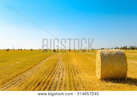 Straw Bales on the Bright Yellow Field under the Blue Sky. Wind Generator Turbines on the Background