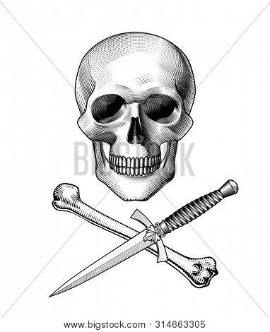 Human skull full face with crossed dagger with a decorative handle and bone. Horror and anatomy retro concept. Vintage engraving stylized drawing