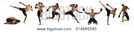 MMA collage. Martial arts fighter (MMA) isolated on white background