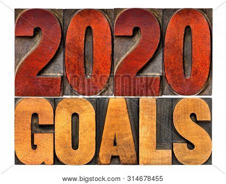 2020 goals banner - New Year resolution concept - isolated text in vintage letterpress wood type printing blocks