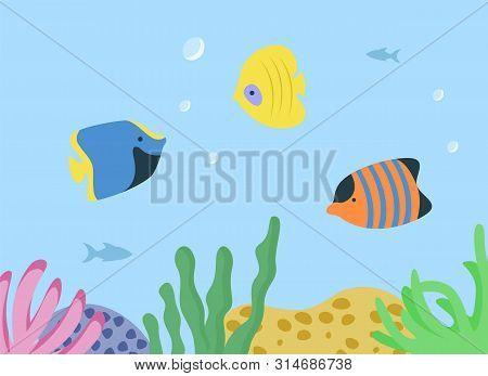 Underwater Seascape With Sea Or Ocean Fish Species Aquarium Habitats. Vector Striped Orange, Blue An